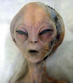 grey_alien_656