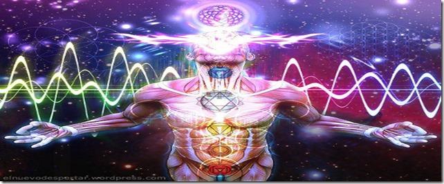 energy_body-490px