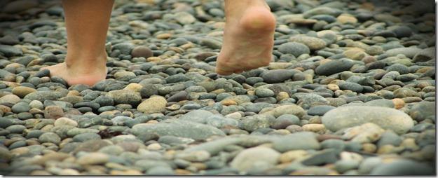 las-piedras-del-camino (1)