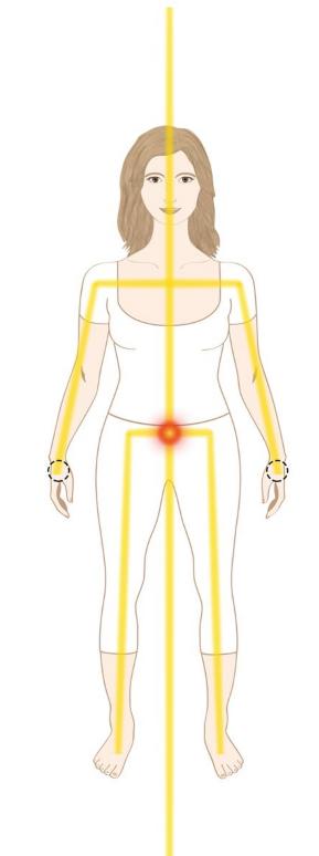 Reforzando el cordón dorado o línea del Hara