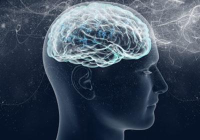El árbol Merkle y los procesos concatenados de pensamientos de la mente
