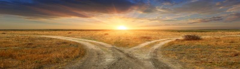 ¿Está nuestra vida predestinada?