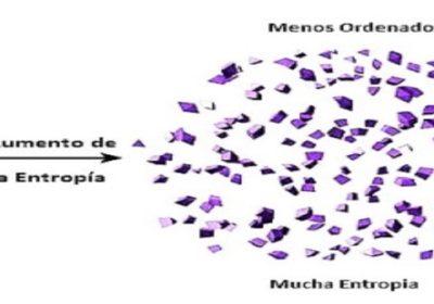"""La entropía del """"uno"""""""